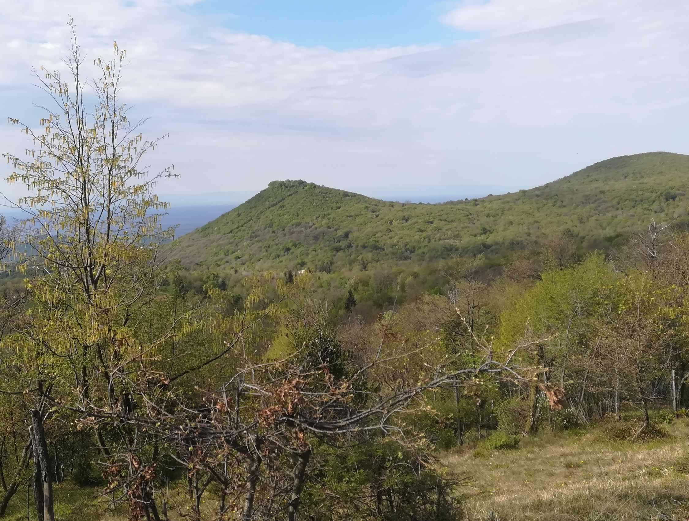 Sulle colline di Cariadeghe