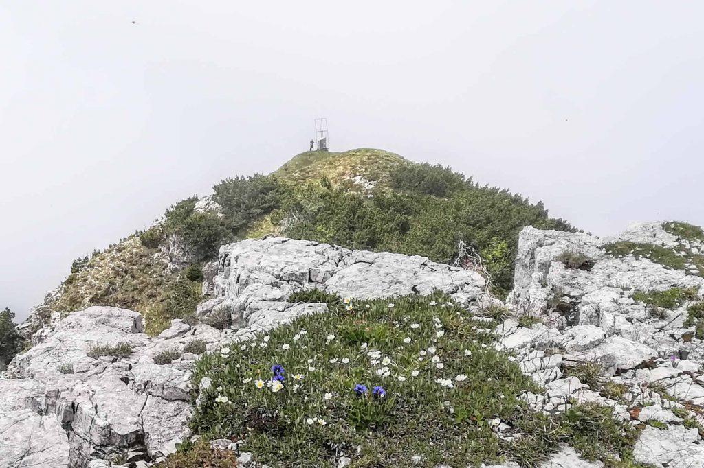 La cima ovest della Corna Blacca