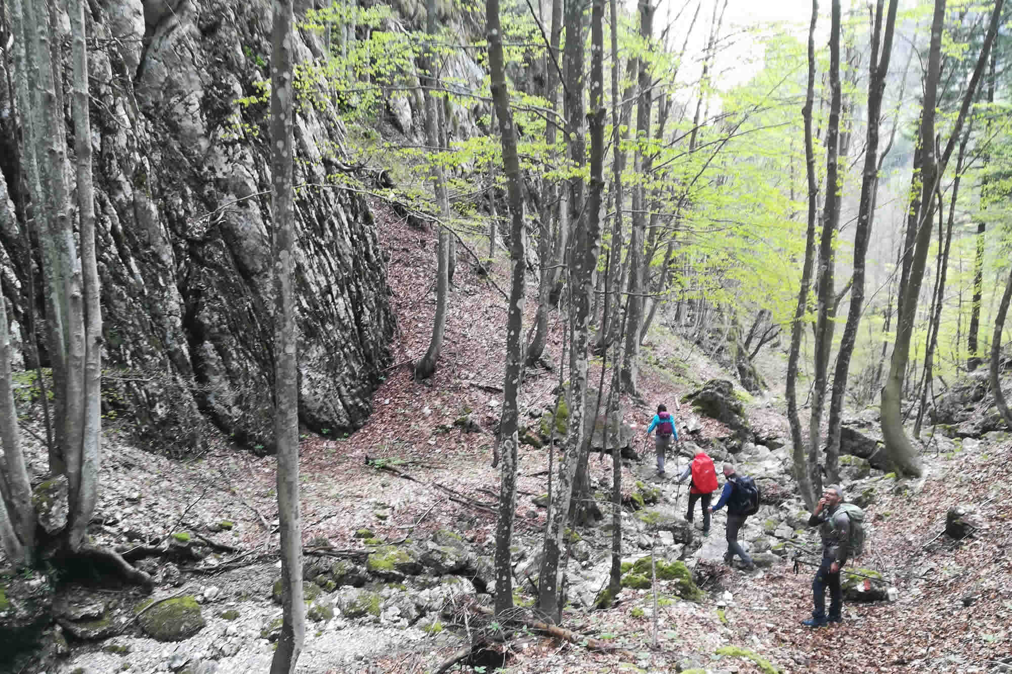 Discesa lungo il torrente Levras