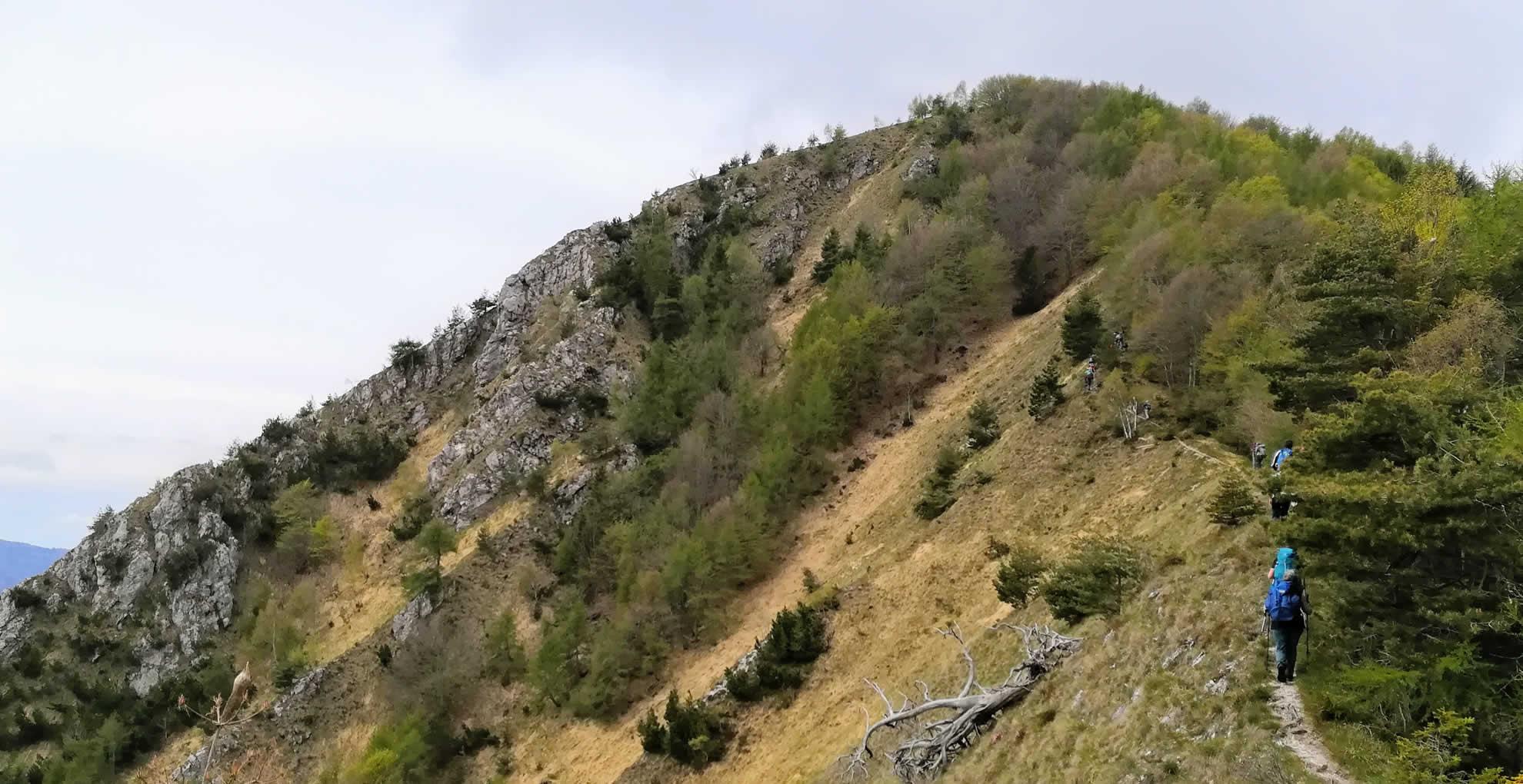 Qusi in vetta al Monte breda